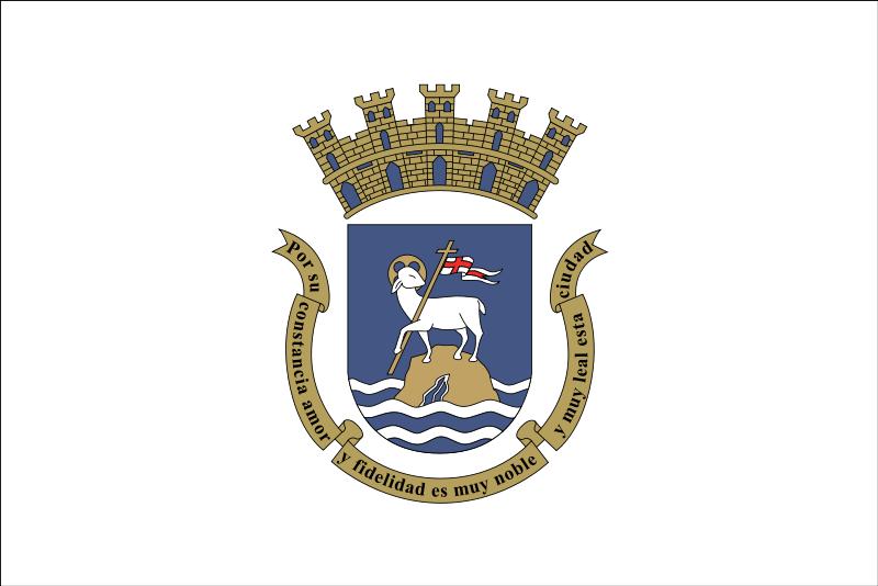 Bandera de San Juan
