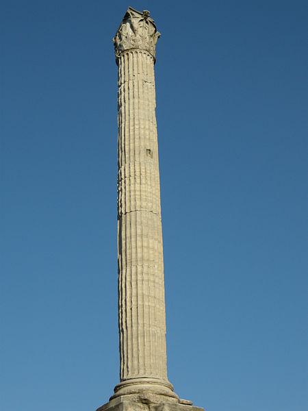 Columna de Focas 1