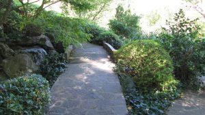Orto Botánico 1