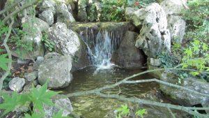 Orto Botánico 2