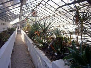 Orto Botánico 3