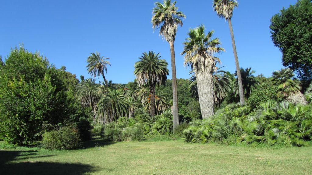Orto Botánico 5