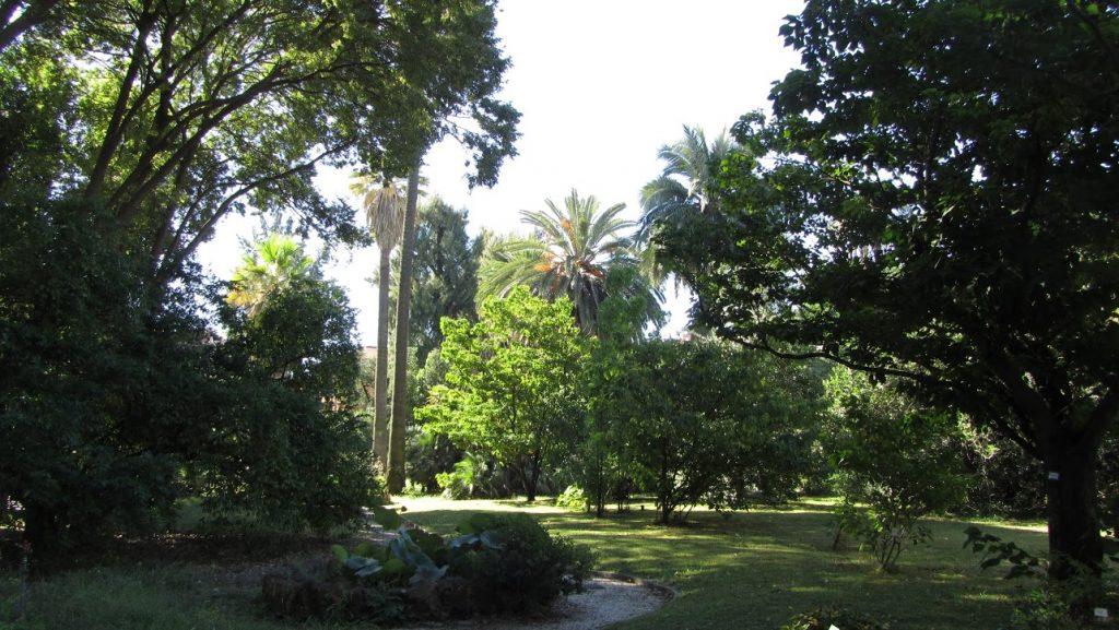 Orto Botánico 7