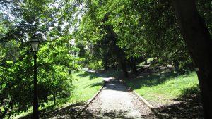 Orto Botánico 9