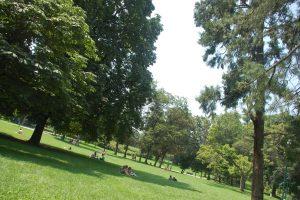 Parque Sempione 7