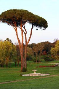 Villa Pamphili 5