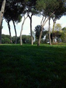 Villa Pamphili 7