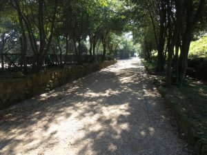 Villa Sciarra 3