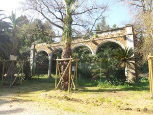 Villa Sciarra 10