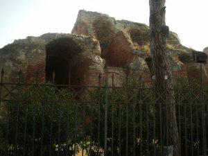 Anfiteatro Flavio  5