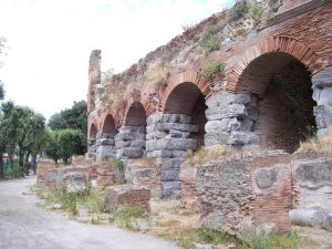 Anfiteatro Flavio  8