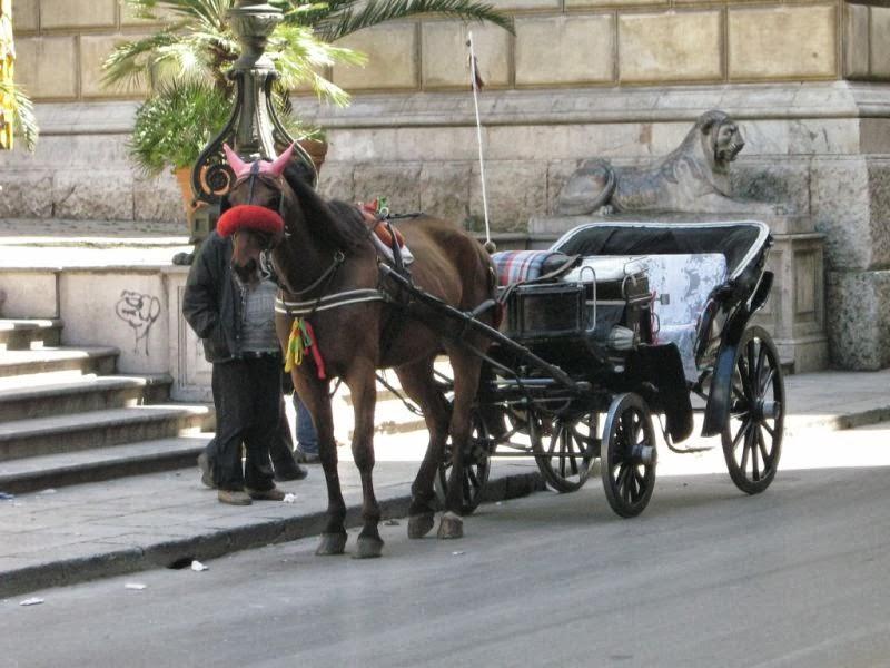 Fontana Pretoria 11