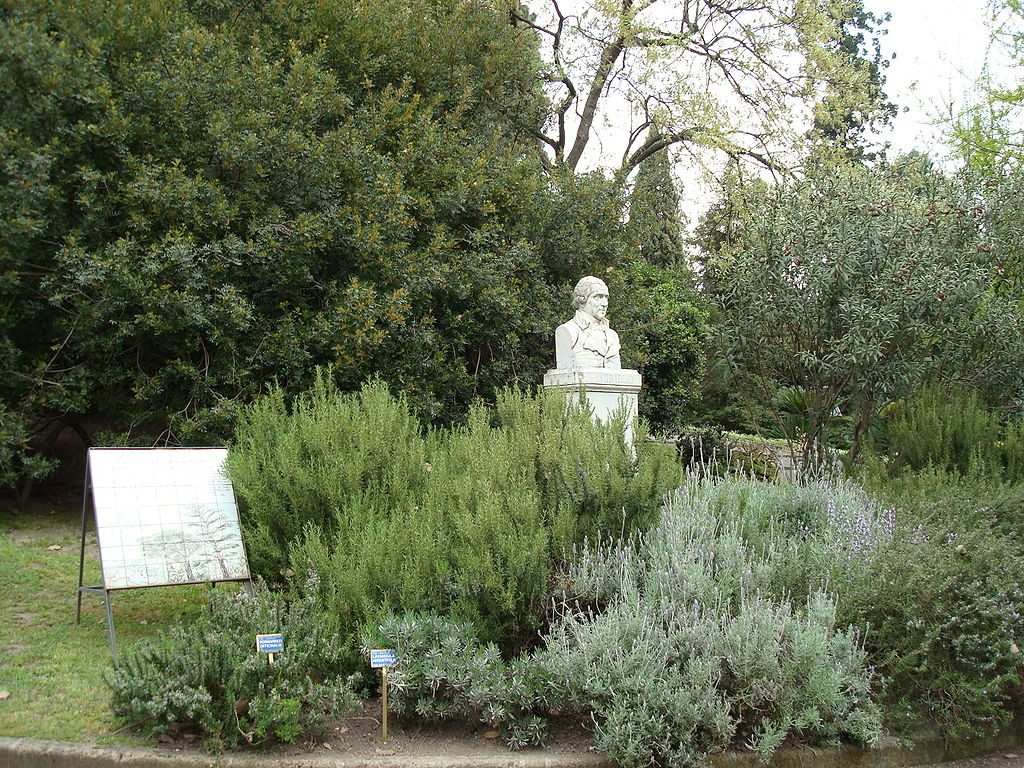 Jardin Botánico 2