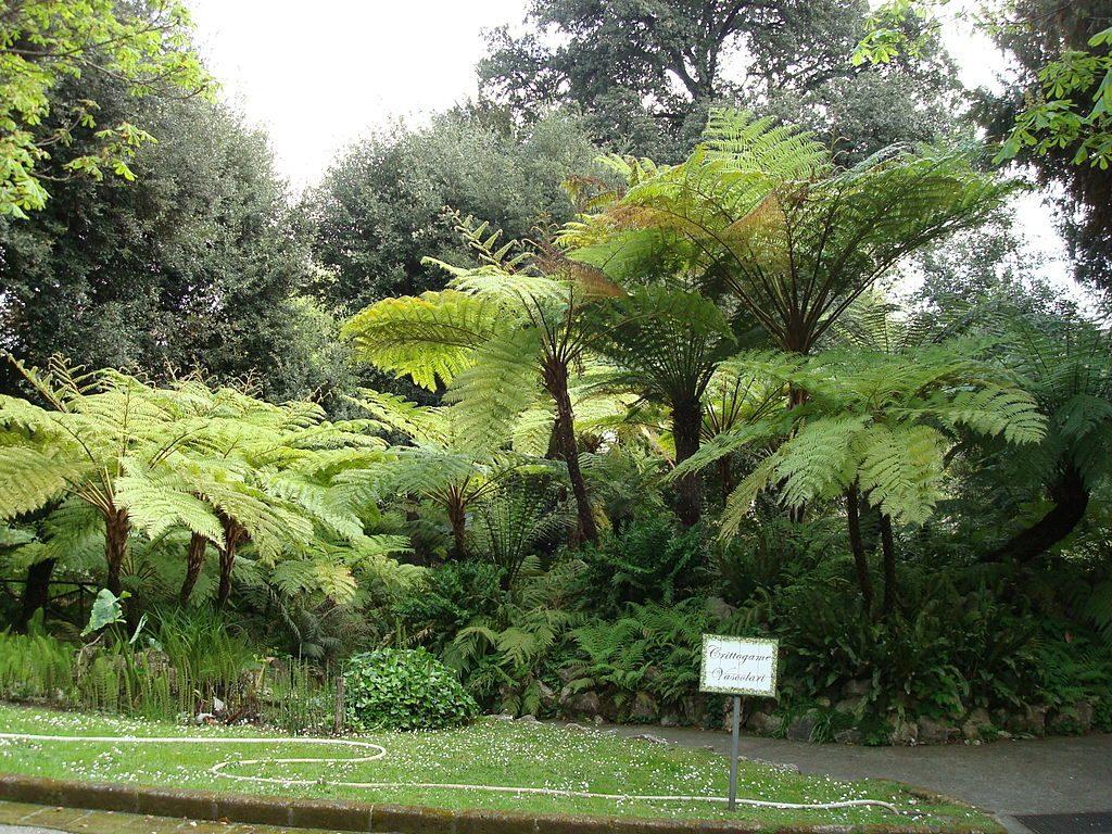 Jardin Botánico 4