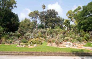 Jardin Botánico