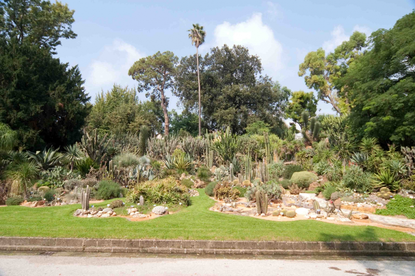 Jardin bot nico for Jardin botanico eventos