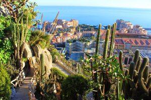 Jardín Exótico de Mónaco 1