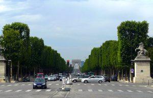 Avenida de los Campos Elíseos