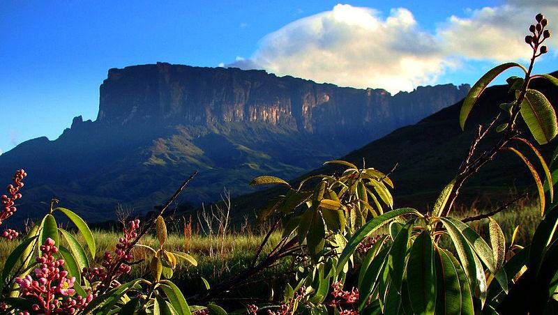 Parque Nacional Canaima: Venezuela 1