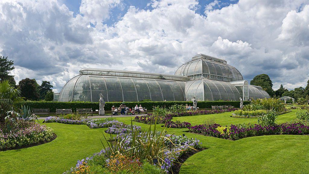 Real Jardín Botánico de Kew 1