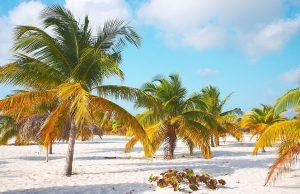 Atractivos turísticos del Caribe
