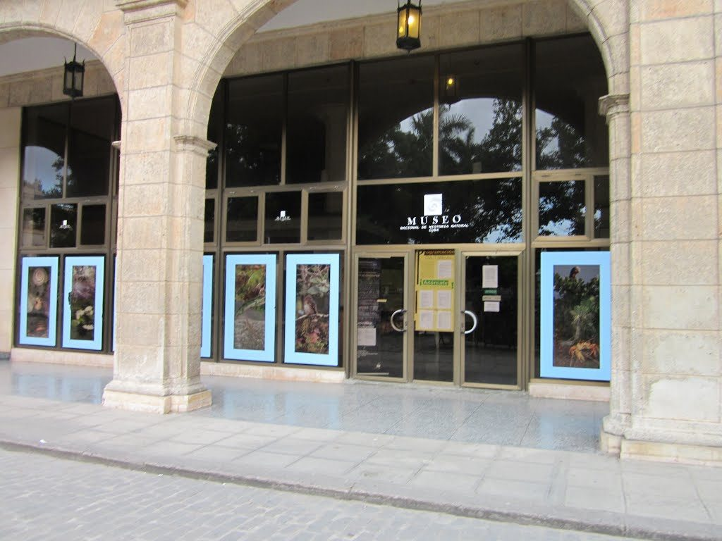Museo Nacional de Historia Natural 1
