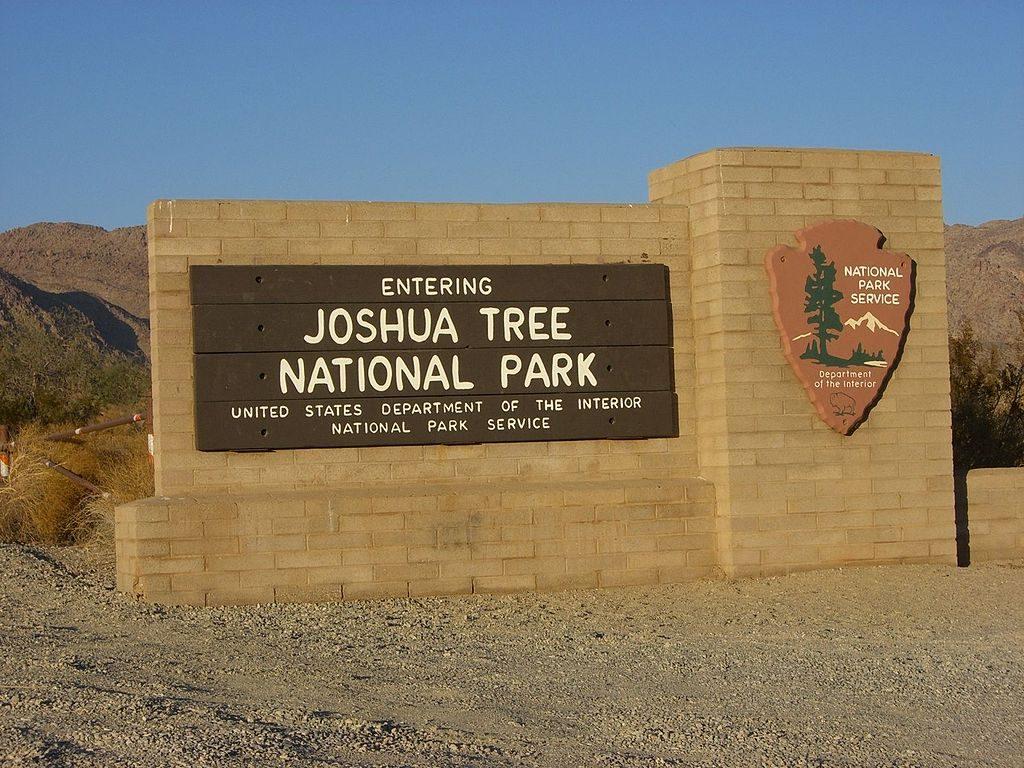 Parque Nacional Joshua Tree 1