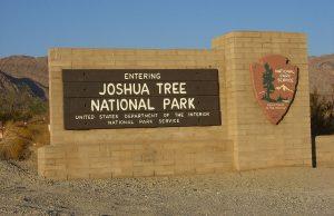 Parque Nacional Joshua Tree