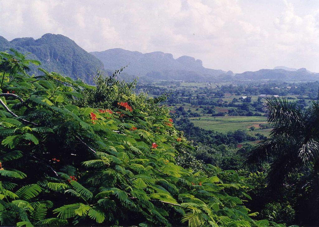 Valle Viñales 1