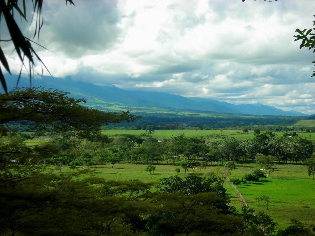 Venezuela: Los Llanos 1
