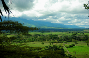 Venezuela: Los Llanos