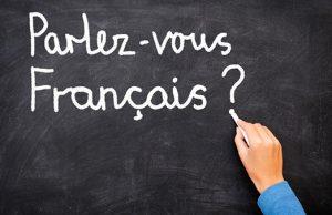 Idioma en Francia
