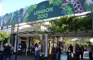 Zoológico de Londres