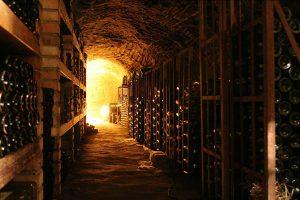 Cava de vinos de Argentina.
