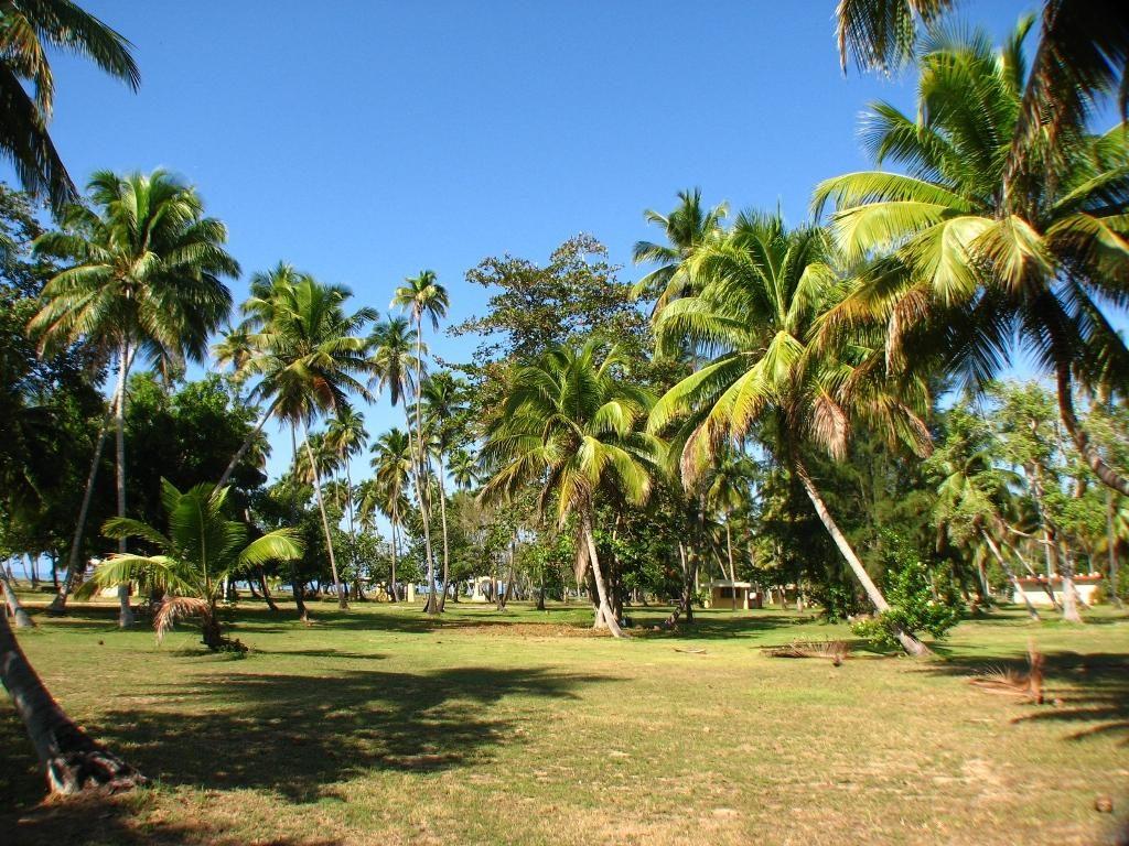 Parque-nacional-tres-hermanos-en-puerto-rico
