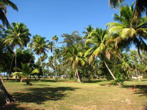 Parque nacional tres hermanos-Puerto-Rico