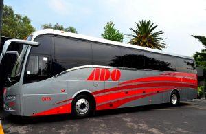 Autobuses Ado.
