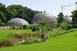 Invernaderos del Jardín Botánico de Zúrich.