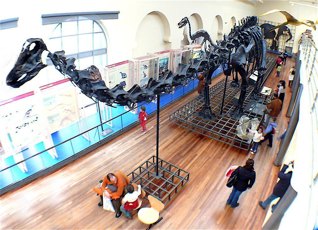 Museo-Nacional-de-Ciencias-Naturales