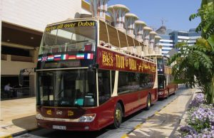 Tours en Dubái