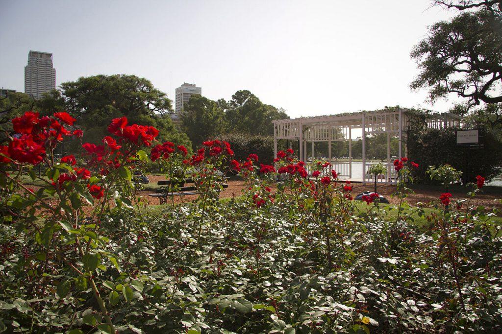 Parque-3-de-fecrero