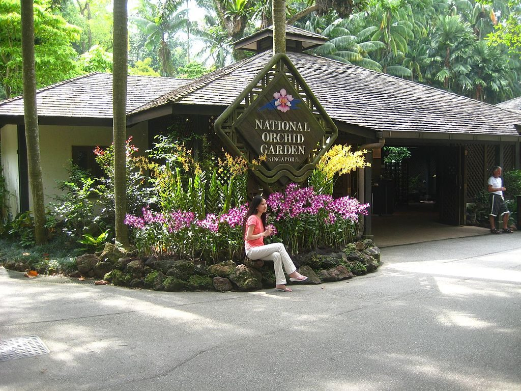 Jardin-Nacional-de-Orquideas