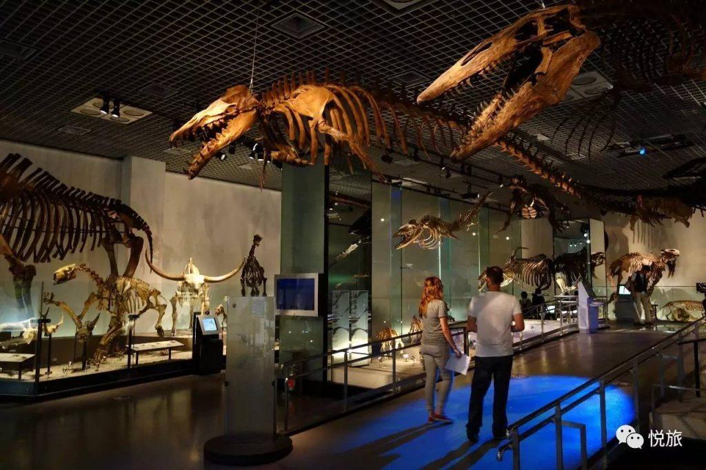 Museo-Nacional-de-Naturaleza-y-Ciencia-de-Japon-1