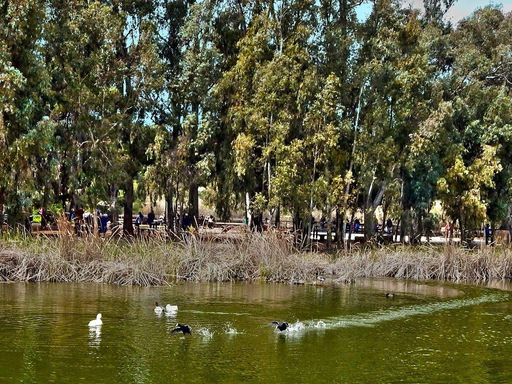Parque-de-la-Conciencia-Ambiental-Antonis-Tritsis