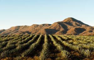 Turismo Rural México